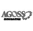 AGOSS雅柏斯健康事業股份有限公司